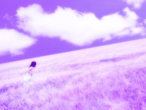 紫色壁纸可爱小清新