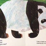 英语绘本(二)---《Panda Bear》