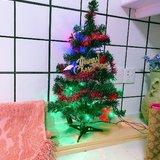 圣诞树预热