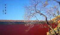 冬日的北京,气势宏大