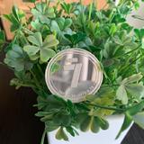 【已發獎】曬新年第一筆攢錢訂單,送2020她幣!