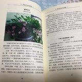 高考日记004:初中篇——梦想从这里起航