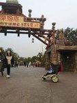 上海三日游:迪士尼+法租界+上海儿童博物馆