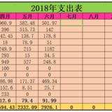 2018年上半年支出:月均5300