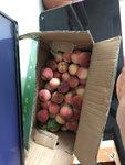 吃桃子??的季節,桃子多的吃不完