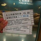 上海拖老携小旅游记录(博物馆,大学,古镇,迪士尼)