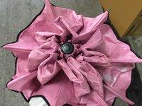 粉色晴雨伞超鸡好看!!!