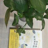 【紫恋子读书】没有橘子,就来颗柠檬吧