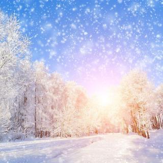 晒入冬的第一场雪