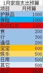 DIY2019年家庭预支表与1月预支表