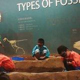 分享一下如何让孩子兴趣盎然地逛博物馆科技馆