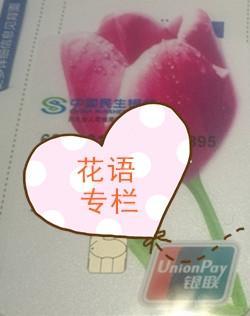 【专栏】花语带你玩转信用卡