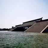 五一的上海到处都是人山人海