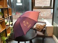 收到紫色小伞,好漂亮!
