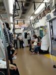 旅途见闻:我眼中的日本