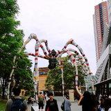 他们的传统与现代——日本自由行(2):东京