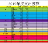 2019全年和1月预算